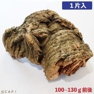 CAP! とりきち横丁 天然コルクボード 1片入 100〜130g前後|torimura
