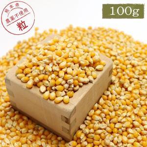 CAP! 鳥の餌 国内産 とうもろこし(粒) 100g|torimura