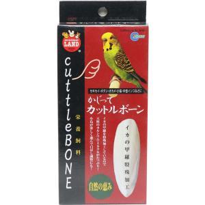 小鳥用 カットルボーン(カトルボーン)2枚入り  カルシウム補給|torippie