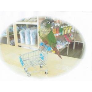 インコのおもちゃ 小型ショッピングカート|torippie
