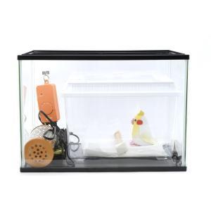 愛鳥 看護特別飼育セット | 飼育ケース、保温電球、温度制御サーモ、温度計|torippie