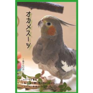 オカメスーツ 鳥さんのおしめ(オカメインコサイズ)【5,400円以上お買い上げで送料無料】