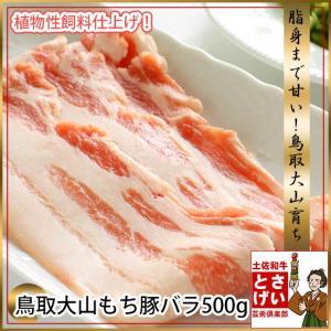 鳥取大山もち豚バラ500g|tosameat