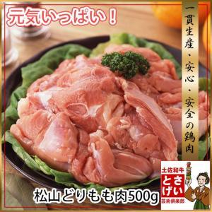 松山どりもも肉500g tosameat