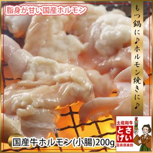 もつ焼肉に♪もつ鍋に♪国産牛ホルモン(小腸)200g冷凍|tosameat