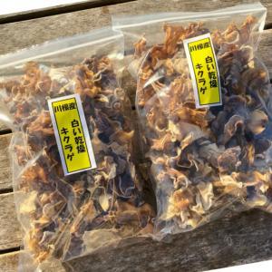 純国産川根産訳あり天日干し乾燥白いキクラゲ200g|toshinsabo
