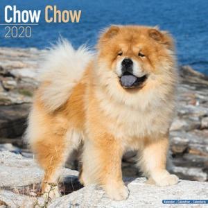 2020ドッグカレンダー 92「チャウチャウ」(英国製)|tosindo