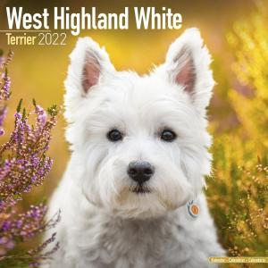 2022ドッグカレンダー 9「ウェストハイランドホワイトテリア」(英国製)|tosindo