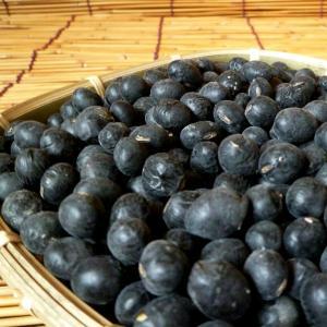 【1kg】岡山県産丹波種黒大豆(はねだし)1kg|totalbox|02