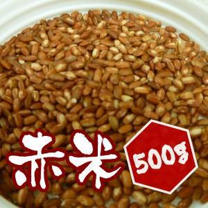 【500g】岡山県産 赤米 500g|totalbox