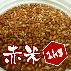 【1kg】岡山県産 赤米 1kg|totalbox
