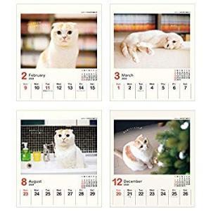 アートプリントジャパン 2020年 ポッケ(週めくりミニ)カレンダー vol.031 1000109240|totasu888