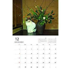 ねこ monthly calendar 2020 (カレンダー)|totasu888