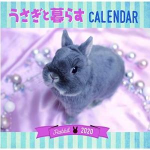 うさぎと暮らすカレンダー2020 (壁掛け)|totasu888