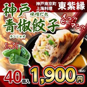 お取り寄せ 餃子 ピーマン ぎょうざ 青椒餃子 40個 神戸 本場 南京町 中国 神戸 名物|tou-free11
