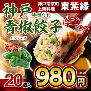 お取り寄せ 餃子 ピーマン ぎょうざ 青椒餃子 20個 神戸 本場 南京町 中国 神戸 名物|tou-free11