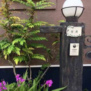 表札 戸建 おしゃれ 凸字 陶器 オーダーメイド オリジナル 陶器表札 猫の森 K188 サイズ:約130×170×7mm|touban-art|04