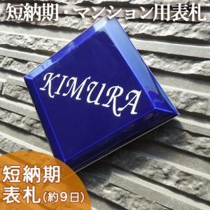 【タイル表札】爽やかなブルーが魅力。激安価格でプチサイズの凹文字タイル表札 プチメゾン ブルー T1 サイズ:約100×100×8mm|touban-art