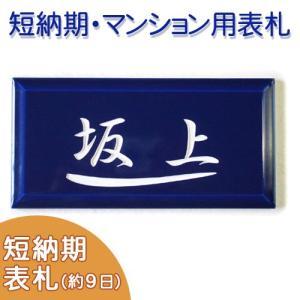 【短納期】【タイル表札】 彫り文字が印象的な艶のある深いブルーのプチサイズタイル表札。メゾン ブルー T2 サイズ:約100×200×8mm|touban-art