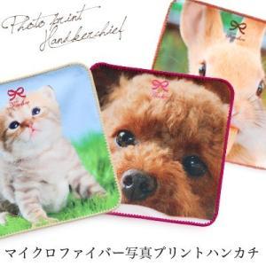 マイクロファイバー写真プリントハンカチ/日本製|toucher-home