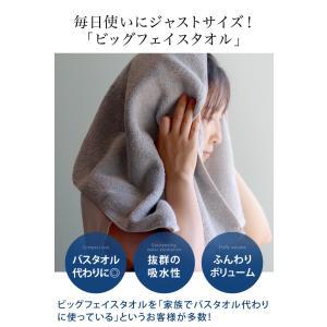 ビッグフェイス ホテルタオル 100cm丈 泉州タオル toucher-home 09