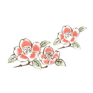 陶芸 下絵具 / 下絵転写紙 3色赤花つばき tougeishop