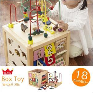 木のおもちゃ 型はめ パズル 迷路 エドインター 森のあそび箱 【ラッピング対応】|tougenkyou