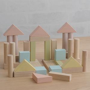 ブロック 積み木 かわいい シンプル PLAN TOYS(プラントイ) ユニットブロック40 【ラッピング対応】|tougenkyou