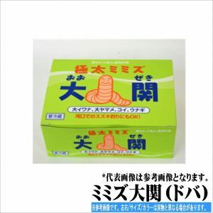 ミミズ大関(ドバ)  冷蔵/冷凍|toukaiturigu