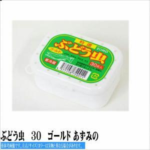 ぶどう虫 30 ゴールド あずみの 冷蔵/冷凍|toukaiturigu