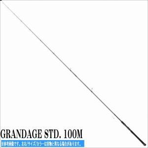 18 GRANDEGE STD グランデージ 100M アピア APIA シーバス サーフロッド|toukaiturigu