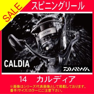 11月25日はストアP5倍 ダイワ  14カルディア 2506H 数量限定 ダイワ 通常スピニング|toukaiturigu