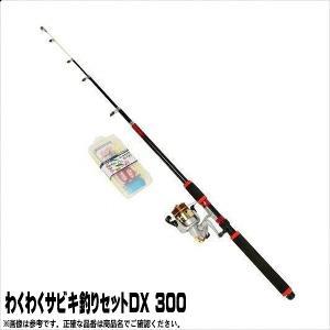 わくわくサビキ釣りセットDX 300 プロマリン 初心者おすすめ|toukaiturigu