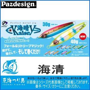 カイセイ 30g パズデザイン ジグ|toukaiturigu
