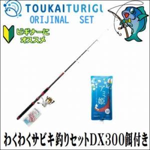わくわくサビキ釣りセットDX300餌付き(通販限定)  入門 セット 初心者 ビギナー 簡単|toukaiturigu