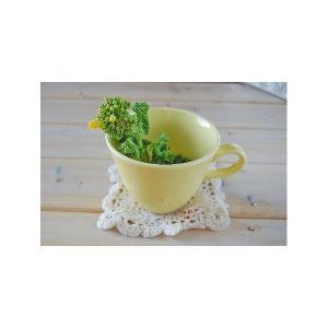 マグカップ5個セット/きれいな菜の花色 訳あり toukistudio