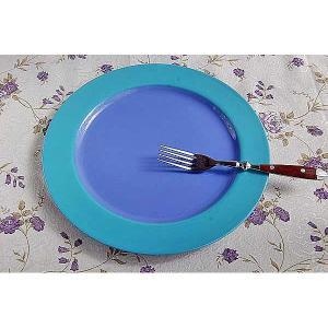 ディナー皿 リンドスタイメスト green&blue|toukistudio