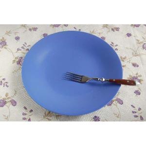 ディナー皿 リンドスタイメスト ブルー|toukistudio