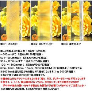 ポリカーボネート 透明-板厚(10ミリ)(両面耐候)1000×1000 toumeikan 03