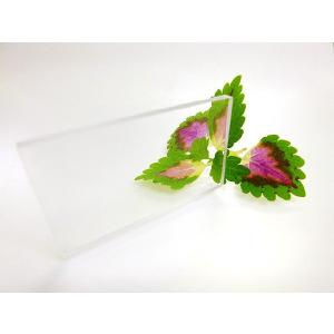 ポリカーボネート 透明-板厚(2ミリ)(両面耐候)1000×500|toumeikan