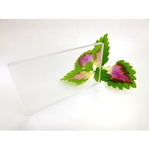 ポリカーボネート 透明-板厚(6ミリ)(両面耐候)1000×1000|toumeikan