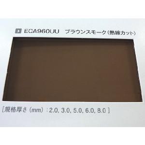 ポリカーボネート 熱線カット板各種-板厚(5ミリ)(両面耐候)1000×500|toumeikan|03