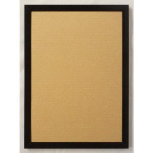 額縁 OA額縁 ポスター額縁 アルミフレーム JパネルNext1枚 A2サイズ594X420mm ブラック|touo