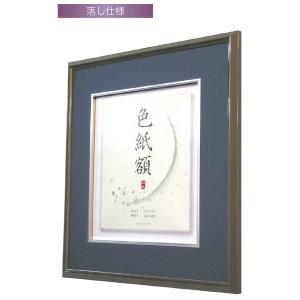 額縁 アートフレーム 色紙額縁 アルミ製 姫色紙 MG和額|touo