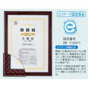 賞状額縁 フレーム 許可証額縁 ネオ金ラック・エコ(00221) 七五サイズ|touo