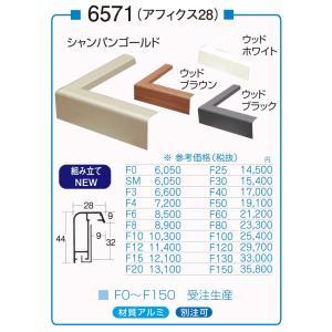 額縁 油絵額縁 油彩額縁 アルミフレーム 仮額縁 6571 サイズF80号|touo