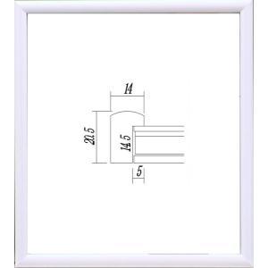 額縁 アートフレーム 色紙額縁 木製 5887 (8X9寸)|touo