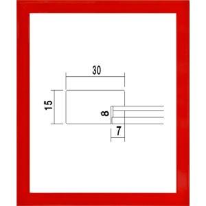 額縁 OA額縁 ポスター額縁 木製 5906 カラーパネル B2サイズ 728X515mm|touo