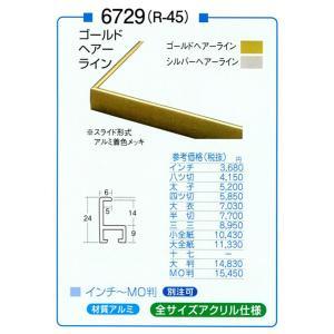 額縁 デッサン額 アルミフレーム 6729 (R-45) 大判サイズ touo
