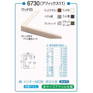 額縁 デッサン額縁 アルミフレーム 6730 (アフィックス11) MO判サイズ|touo